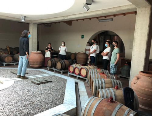 In Selvapiana the tastings start again and safely with future AIS sommeliers